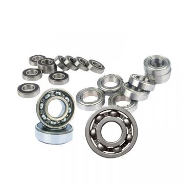 Top Sale Japan NSK/Koyo/NTN Motor Bearing 6006 Zz/2RS Ball Bearing